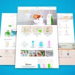 Diseño Web VZ